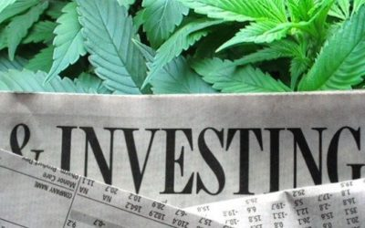 Investing in the Cannabis Industry…Buyer Beware!